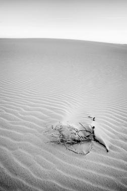 Minimalist 2 at White Sands