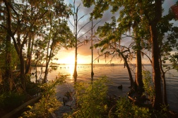 St. Johns River Sunset